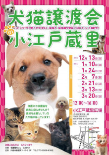 kawagaekoedo_chirasi12_3.jpg