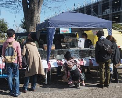 2月14日(日)新都心東広場での譲渡会の様子