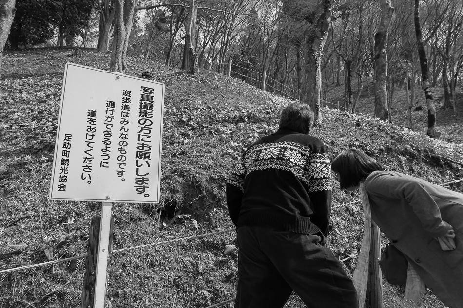 katakuri-7.jpg