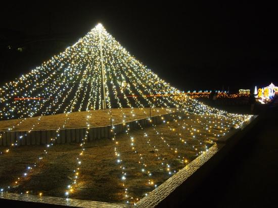 151221府立植物園クリスマス④