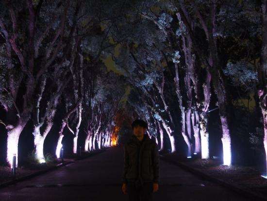 151221府立植物園クリスマス②