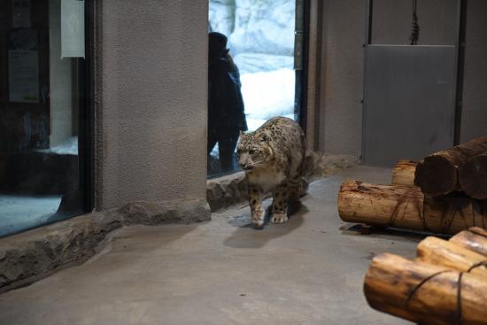Zoo 2016/3/29 3