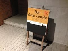 Gran Cenote:外観