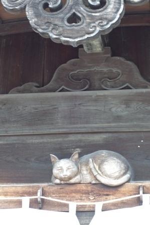 伊勢宝くじ猫