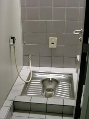 009dfhhfd450px-Dubai_Airport_toilet.jpg