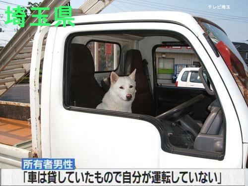 7 - Saitama Prefecture