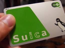 suika654986665650001546879887.jpg