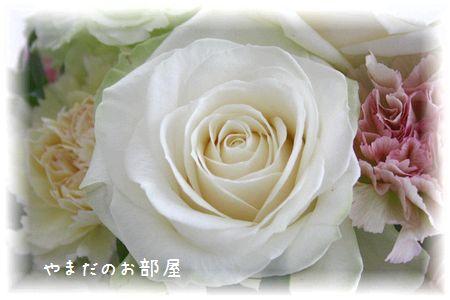 2016年みんニャのお誕生日のお花③