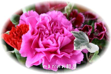 2016年やまだの誕生日のお花⑥