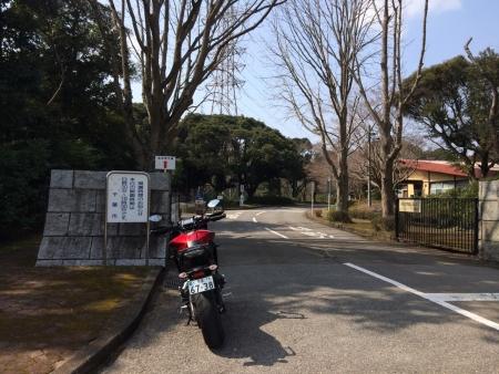Image_daae606.jpg
