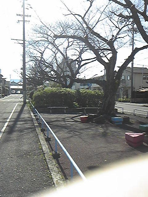 160317_145000.jpg