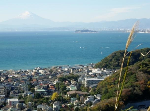 仙元山富士