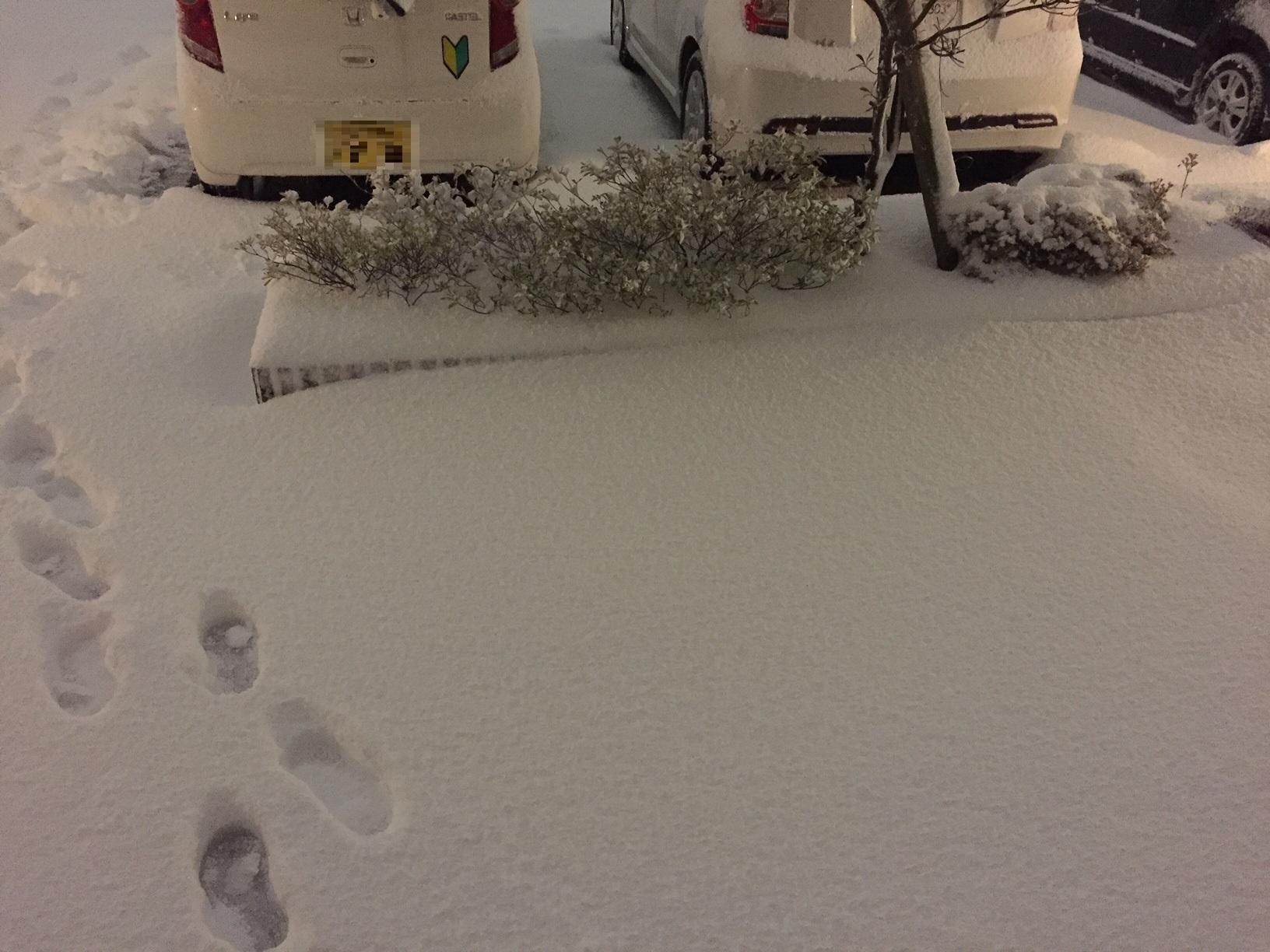 2016福井初積雪