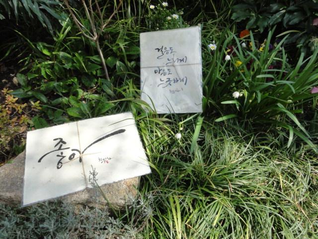 2016年3月20日 庭の草花と書芸作品