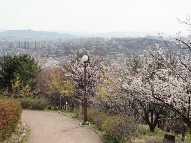 2013年4月19日 社稷公園裏手 散策路