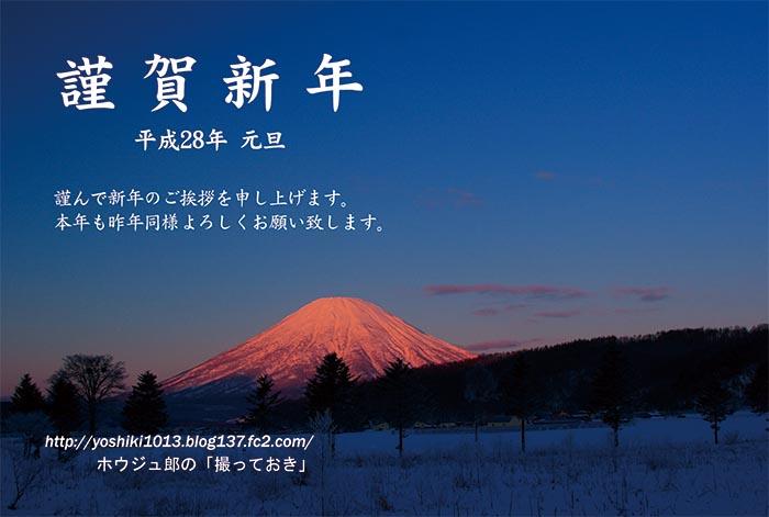 芳樹年賀状2016年用web用