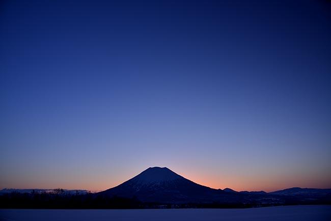 黎明羊蹄2