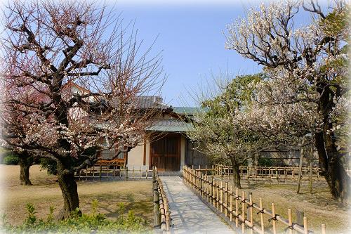miyauchikoen
