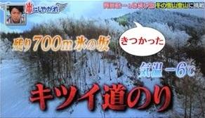 arashinishiyagare_nyukasayama07.jpg