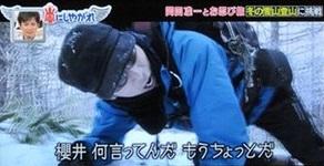 arashinishiyagare_nyukasayama09.jpg
