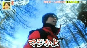 arashinishiyagare_nyukasayama11.jpg