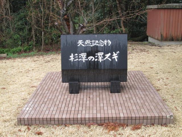 富山 110