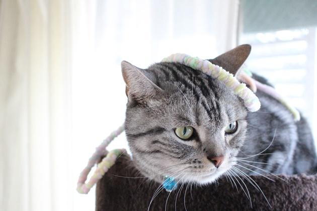 毛糸でおもちゃ