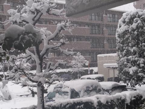 18日のドカ雪