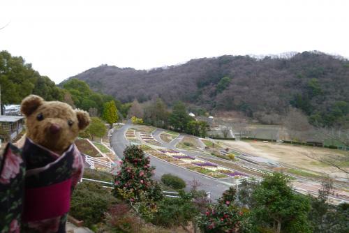 植物公園 緑花センター 2016 2月