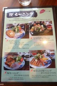 桜 珈琲 さん  2016 3月14日(mt.okuho)