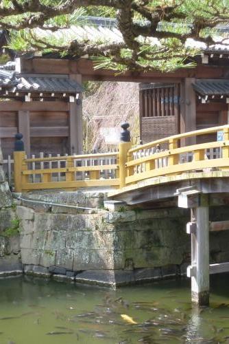 お城 枝垂れ桜 2016 3月20日(mt.okuho)