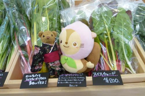 MIO KITAKAN 2016 3月20日 (日)(mt.okuho)