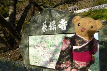 長保寺 2016 3月22日(火)  (mt.okuho)