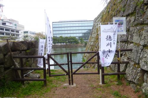 お城 枝垂れ桜 昼 2016 3月29日