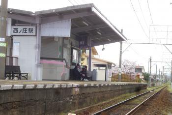 河西公園 桜  西庄駅 2016 4月3日(mt.okuho)