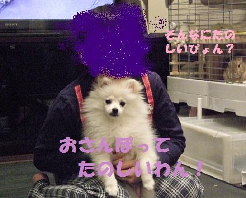 DSCF9831_20160306102446c13.jpg