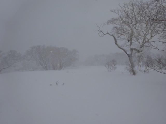 1月2日 上は相変わらずの景色