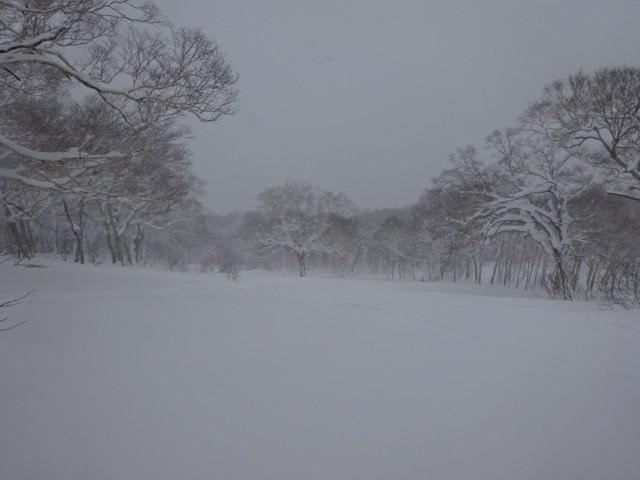 1月2日 下部は重雪