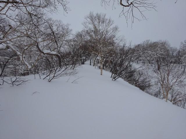 1月3日 1000mくらいで前日トレース消失