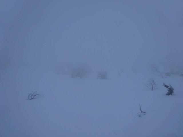 1月3日 上は真っ白