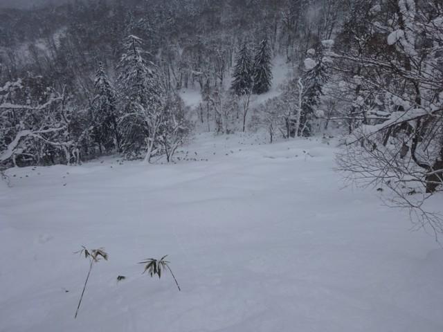 1月4日 ボタボタ雪ノートラック