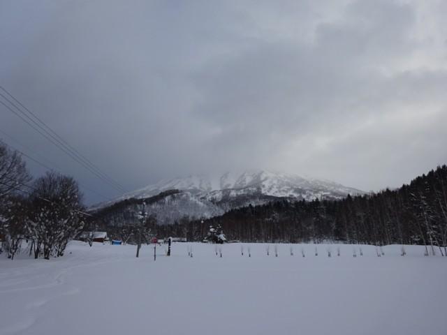 1月5日 おは羊蹄山