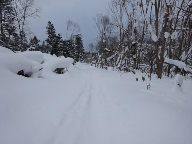 1月5日 最後の林道はストックボード