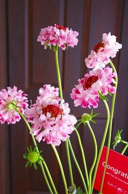 s-7th flower-2