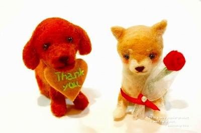 s-Thankyou dog