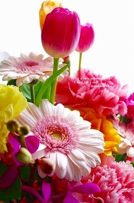s-Flower-2.jpg