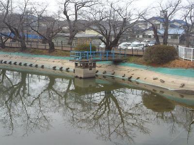 竜が池散策4