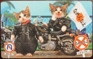 なめ猫(ヤンキー服装)