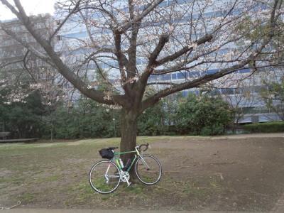 photo_colnago_turinigawa_2_0322.jpg