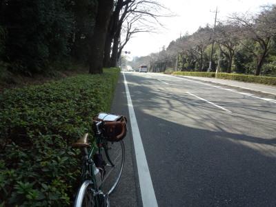 photo_randner_yamaotoseirinnsyo_5_2016_0227.jpg